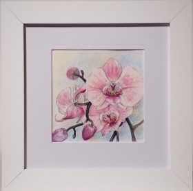 pink orchid, pink flower painting, miniature, white frame, illustration, blue, white, pink