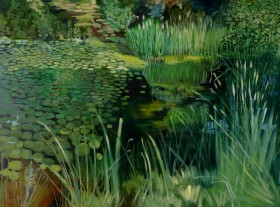 Rising Sun Lake, Lilies