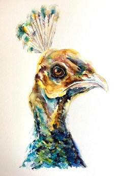 Peevish Pam artwork, a contemporary watercolour painting of a peahen in bright emerald hues.