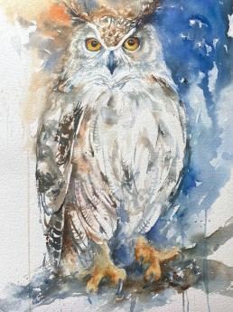 Savini the eagle Owl