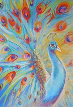 Strutting Peacock
