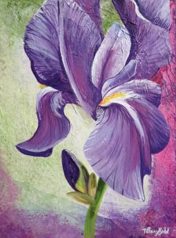 Textured Iris
