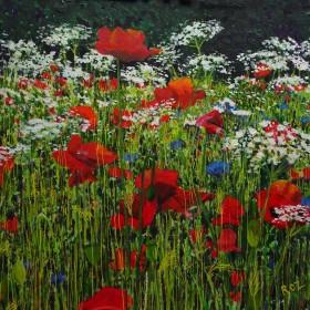 Wildflower Meadow 6